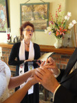 chicago wedding officiant