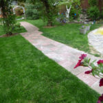 path-through-backyard
