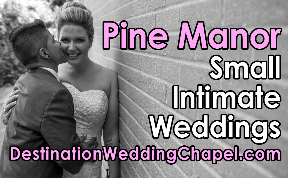 top wedding officiant in chicago
